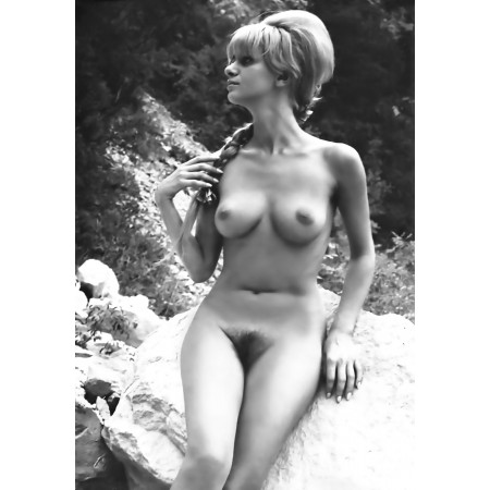 """24""""x16"""" Retro Vintage Poster Hairy Pussy Amateur Nudes 60s outdoor"""