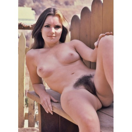 """24""""x16"""" Retro Vintage Hairy Pussy Pubic hair Poster, that 70's bush"""